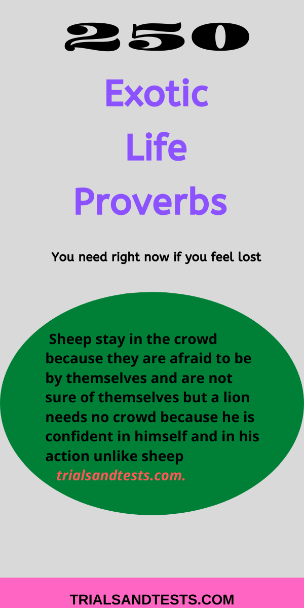 proverbs-about-life.