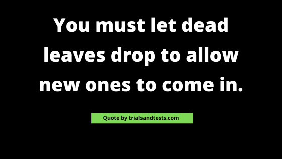 people-come-and-go-quotes