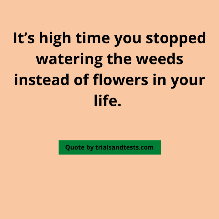 blossoming-flowers-quotes