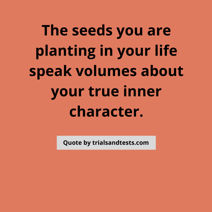 plant-good-seeds-quotes