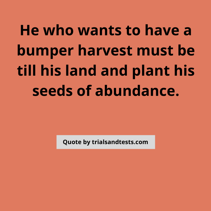 planting-seeds-quotes