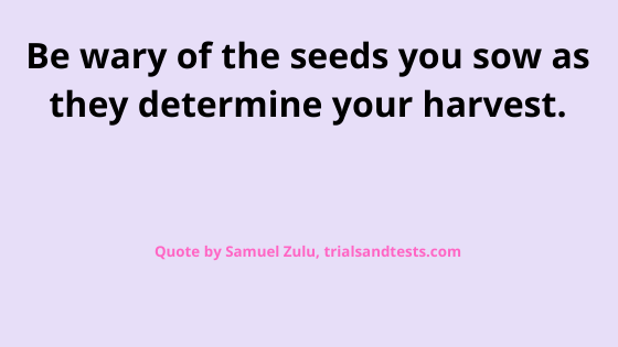 quotes-about-planting-seeds.