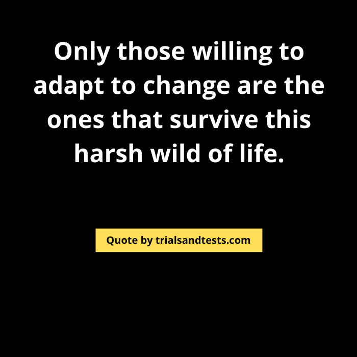 quotes-on-survival